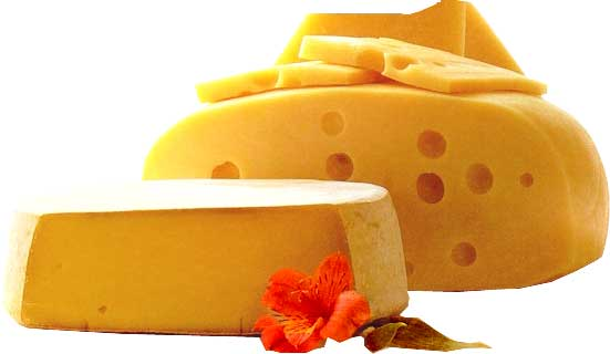 queijo-classificacao